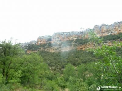 Sedano,Loras-Cañones Ebro,Rudrón;viajes julio cerezos del jerte excursion madrid club de viajes